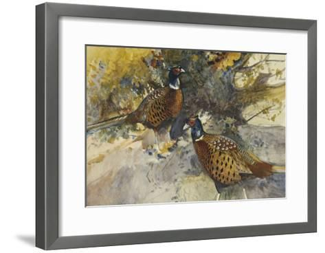 Cock Pheasants under a Beech Tree-Frank		 Southgate-Framed Art Print
