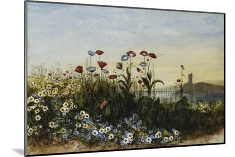 Ferry Carrig Castle, Co. Wexford, Seen Through a Bank of Wild Flowers-Andrew		 Nicholl-Mounted Giclee Print