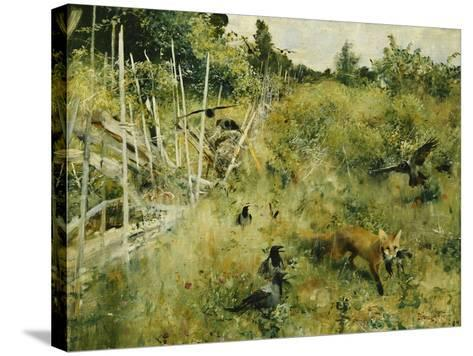 A Fox Taking a Crow-Bruno Liljefors-Stretched Canvas Print