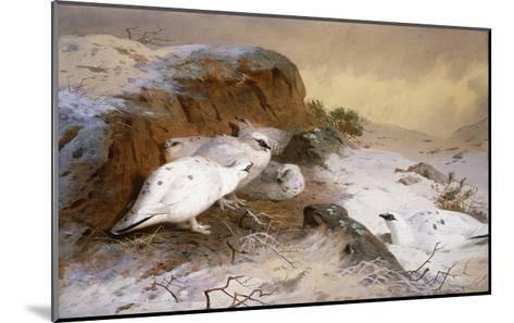 Ptarmigan in the Snow-Archibald Thorburn-Mounted Giclee Print