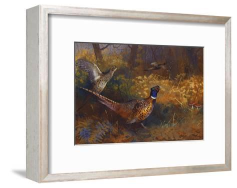 A Cock and Hen Pheasant at the Edge of a Wood-Archibald		 Thorburn-Framed Art Print