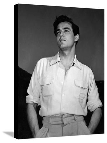 Portrait of Vittorio Gassman--Stretched Canvas Print
