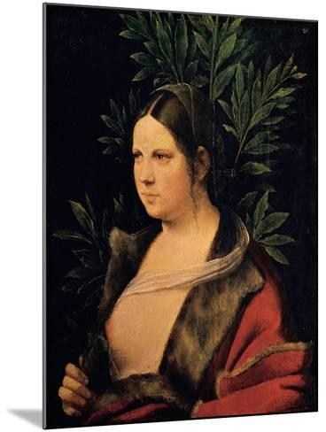 Portrait of a Young Woman (Laura)-Giorgione da Castelfranco-Mounted Giclee Print
