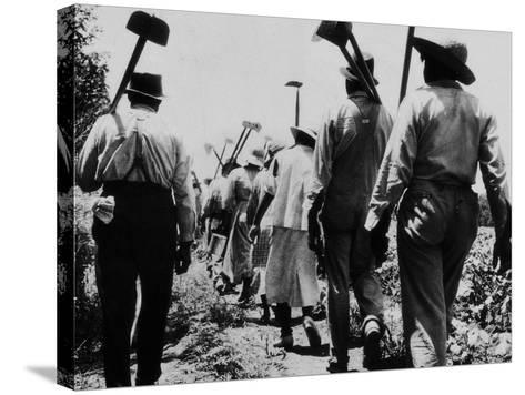 Black Slaves Going to Work--Stretched Canvas Print