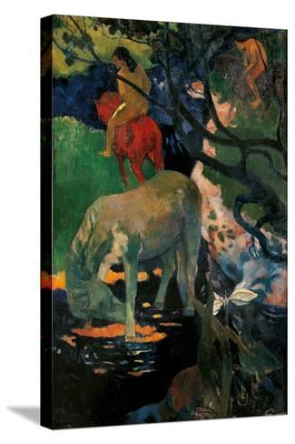 White Horse-Paul Gauguin-Stretched Canvas Print