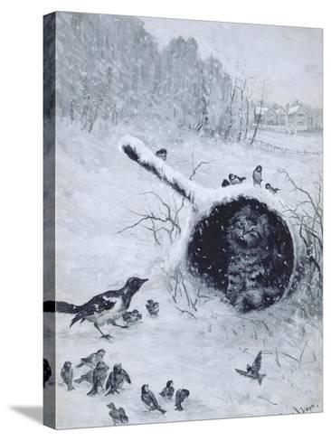 Taking Shelter-Louis Wain-Stretched Canvas Print