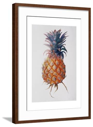 Queenie Pineapple, 1994-Rebecca John-Framed Art Print