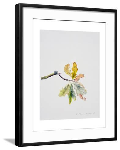 Oak Leaves, 2001-Rebecca John-Framed Art Print