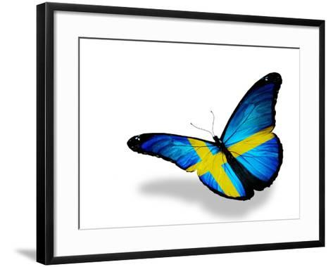 Swedish Flag Butterfly Flying, Isolated On White Background-suns_luck-Framed Art Print