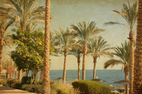 Retro Image Of Beach With Date Palms Amid The Blue Sea And Sky. Paper Texture-A_nella-Stretched Canvas Print