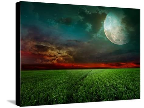 Young Wheat Field At Night With The Moonlight-Krivosheev Vitaly-Stretched Canvas Print
