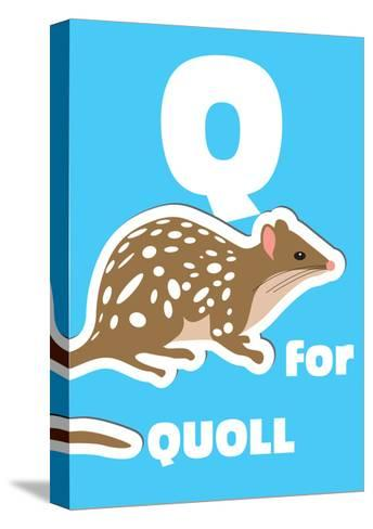 Q For The Quoll, An Animal Alphabet For The Kids-Elizabeta Lexa-Stretched Canvas Print
