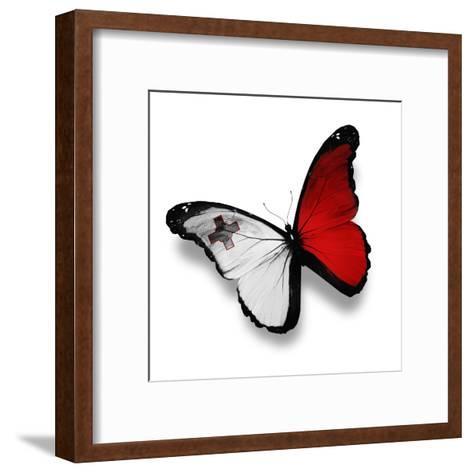 Maltese Flag Butterfly, Isolated On White-suns_luck-Framed Art Print