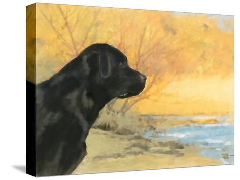 Oil Painting Portrait Of Black Labrador In Autumn-Yarvet-Stretched Canvas Print