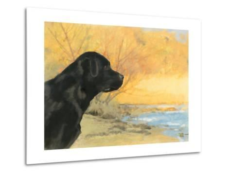 Oil Painting Portrait Of Black Labrador In Autumn-Yarvet-Metal Print