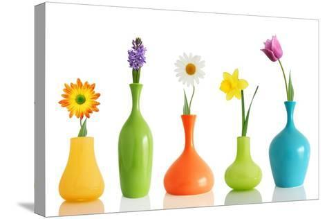 Spring Flowers In Vases Isolated On White-Acik-Stretched Canvas Print