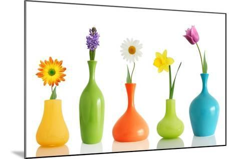 Spring Flowers In Vases Isolated On White-Acik-Mounted Art Print