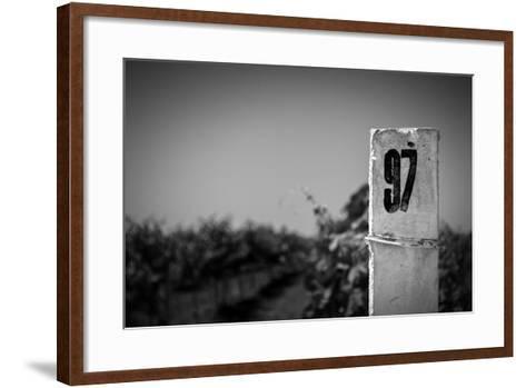 White Column On A Vineyard Background-tashatuvango-Framed Art Print