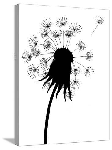 Dandelion Black And White- falonkoontz-Stretched Canvas Print