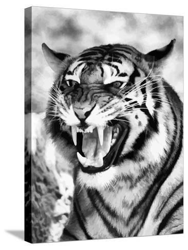 Angry Tiger Face-Snap2Art-Stretched Canvas Print