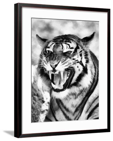 Angry Tiger Face-Snap2Art-Framed Art Print