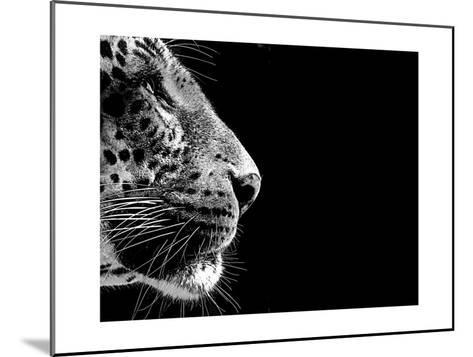 Isolated Leopard Face Card-Snap2Art-Mounted Art Print