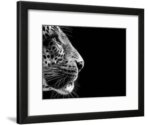 Isolated Leopard Face Card-Snap2Art-Framed Art Print