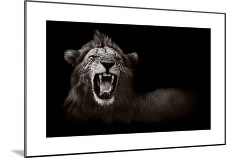 Lion Displaying Dangerous Teeth-Donvanstaden-Mounted Art Print