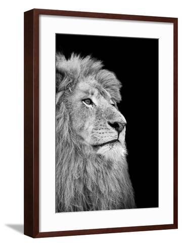 Black And White Isolated Lion Face-Snap2Art-Framed Art Print