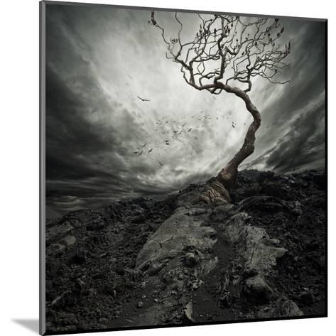 Dramatic Sky Over Old Lonely Tree-NejroN Photo-Mounted Art Print