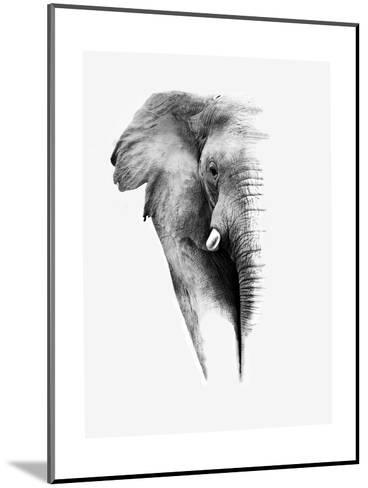 Artistic Black And White Elephant-Donvanstaden-Mounted Art Print