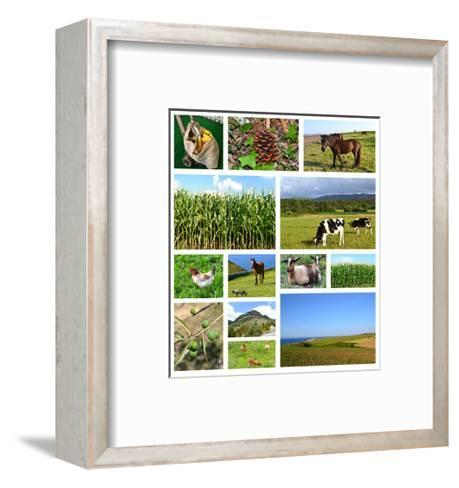 Collage Of Rural Landscapes- miff32-Framed Art Print