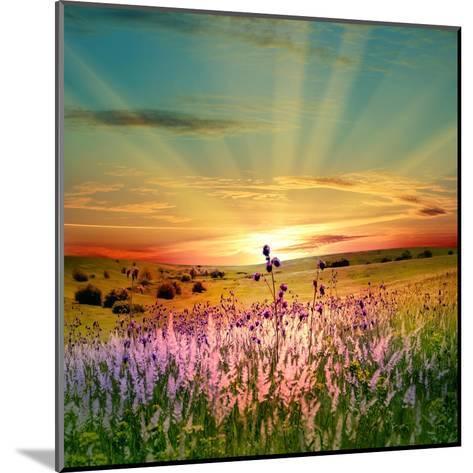 Sunset Is In The Field-nadiya_sergey-Mounted Art Print
