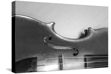 Black White Violin-ammza12-Stretched Canvas Print