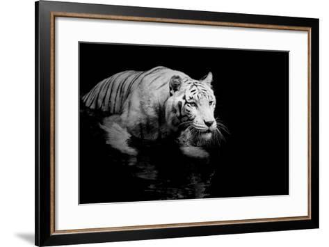White Tiger-Kjersti-Framed Art Print