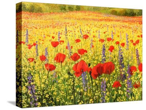 Sea Of Blossom-kirilstanchev-Stretched Canvas Print