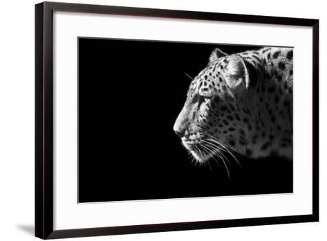 Leopard Portrait-Reddogs-Framed Art Print