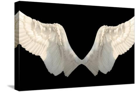 Two Wings Isolated-Lilun-Stretched Canvas Print