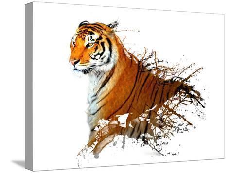 Tiger Splash- MATTIAMARTY-Stretched Canvas Print