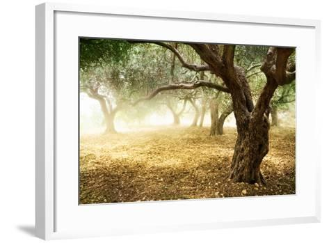 Olive Trees-Subbotina Anna-Framed Art Print