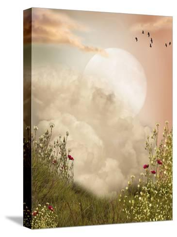 Magic Landscape-justdd-Stretched Canvas Print