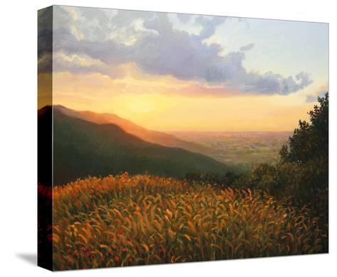 Colors Of The Light-kirilstanchev-Stretched Canvas Print