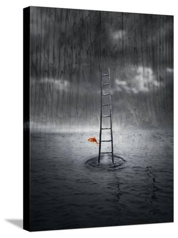 Climb Up-ValentinaPhotos-Stretched Canvas Print