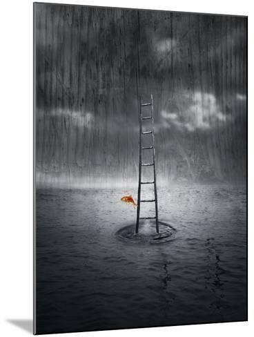 Climb Up-ValentinaPhotos-Mounted Art Print