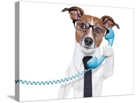 Business Dog On The Phone-Javier Brosch-Stretched Canvas Print