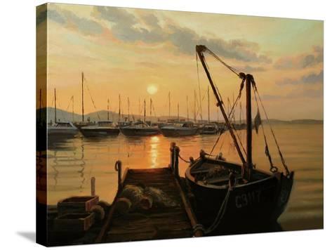 Sun Path-kirilstanchev-Stretched Canvas Print