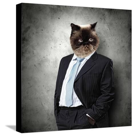 Funny Fluffy Cat In A Business Suit Businessman. Collage-Sergey Nivens-Stretched Canvas Print