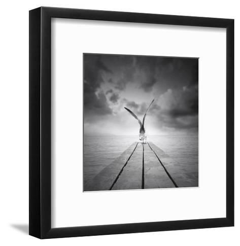 Freedom-ValentinaPhotos-Framed Art Print