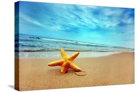 Starfish on the Beach-Michal Bednarek-Stretched Canvas Print