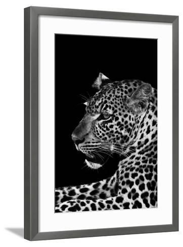 Leopard-Donvanstaden-Framed Art Print